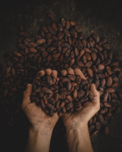 insights coffee beans